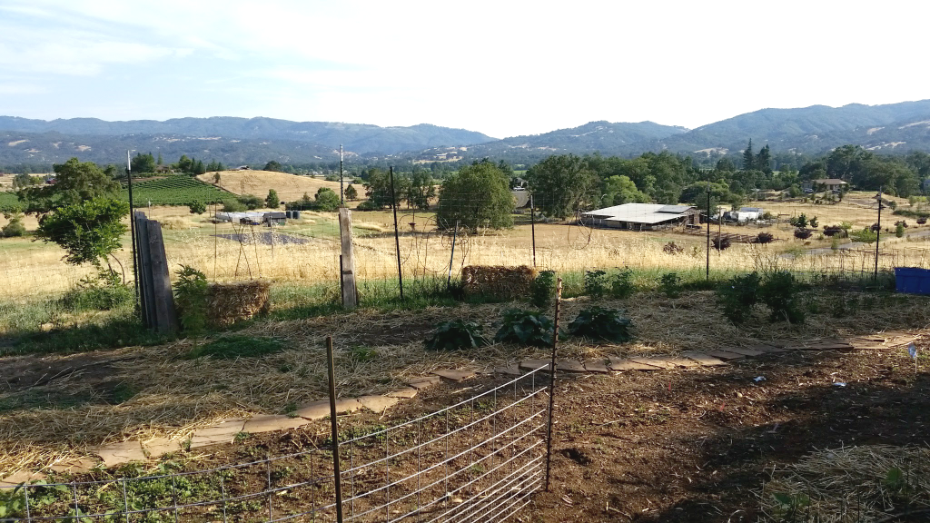 vegetable garden with farmland in the background