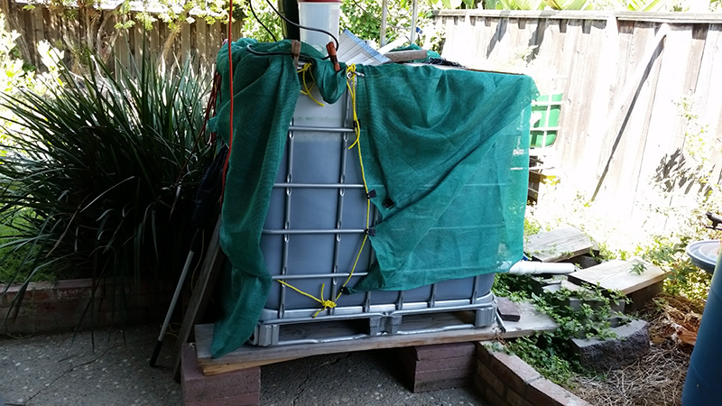 Plastic cube in a steel cage with a green shade cloth attached via yellow rope and orange clips.