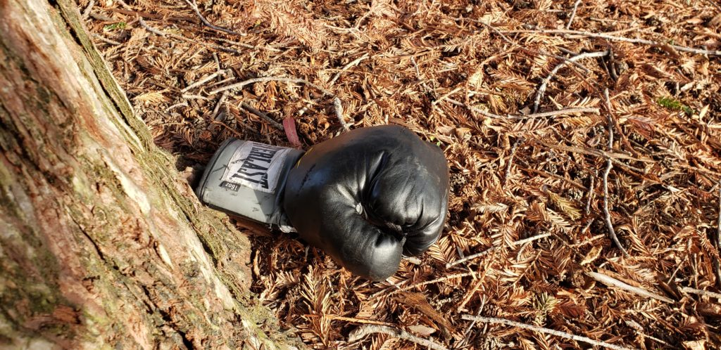 single abandoned boxing glove
